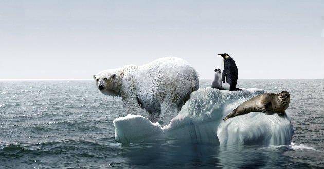 cambio-climala-farsa-de-negar-el-cambio-climatico